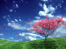 Flor da árvore Foto de Stock Royalty Free
