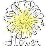 Flor da aguarela Imagens de Stock