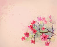 Flor da aguarela Imagens de Stock Royalty Free