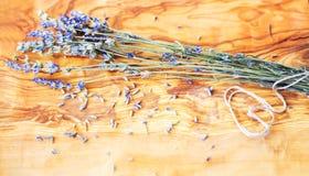 Flor da alfazema Fotografia de Stock