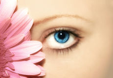 Flor da beleza Imagem de Stock Royalty Free