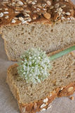 Flor da cebola na fatia de pão oniony Foto de Stock