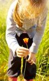 Flor da colheita da menina da criança em um prado Fotografia de Stock