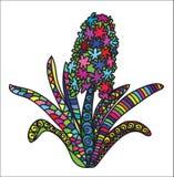 Flor da cor de Zentangle Imagens de Stock Royalty Free