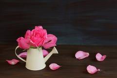 Flor da cor do rosa de Rosa no fundo de madeira Imagem de Stock