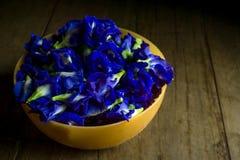 Flor da ervilha de borboleta ou da ervilha azul na tabela de madeira marrom, vista superior Imagem de Stock