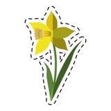 Flor da folha da flor do narciso amarelo dos desenhos animados ilustração royalty free