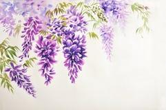 Flor da glicínia fotografia de stock