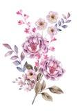 Flor da ilustração da aquarela no fundo simples Fotografia de Stock Royalty Free