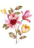 Flor da ilustração da aquarela no fundo simples ilustração stock