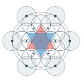 Flor da ilustração de cor sagrado da geometria da vida Imagens de Stock Royalty Free