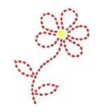Flor da joaninha. Imagem de Stock Royalty Free