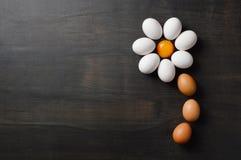 Flor da margarida dada forma com os ovos no fundo preto fotografia de stock royalty free