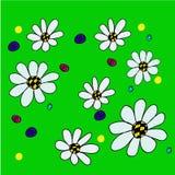 Flor da margarida no fundo verde Imagem de Stock