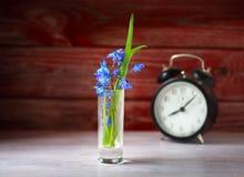 Flor da mola, close-up do despertador do vintage na superfície de madeira Fotos de Stock Royalty Free