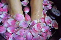 A flor da mulher da saúde da massagem do pé dos termas relaxa o asiático da terapia Foto de Stock Royalty Free