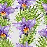 Flor da orquídea da aquarela e teste padrão sem emenda das folhas de palmeira Fotografia de Stock