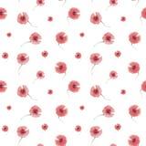 Flor da papoila do teste padrão Imagens de Stock Royalty Free