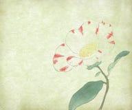Flor da pintura de água Imagem de Stock Royalty Free
