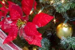 Flor da poinsétia do Natal e quinquilharia vermelhas grandes do ouro em uma árvore imagens de stock