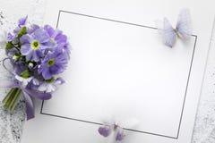 Flor da prímula no cartão de papel Imagens de Stock Royalty Free