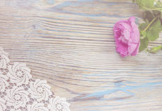 Flor da rosa do rosa na tabela de madeira Fotos de Stock Royalty Free