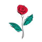 Flor da rosa do vermelho do esboço de esboços pretos Imagem de Stock Royalty Free