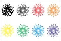 A flor da samambaia Fotos de Stock
