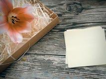 Flor da tulipa em pranchas escuras da madeira do celeiro Imagens de Stock