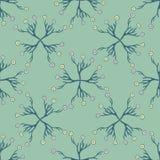 Flor Daisy Bouquet Seamless Vetora Pattern da mola M?o tirada por todo o lado em ilustração do vetor