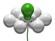 Flor das ampolas brancas e verdes no fio verde ilustração royalty free