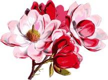 Flor de Apple da mola. Fotos de Stock Royalty Free