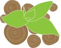 Flor de bambú stock de ilustración