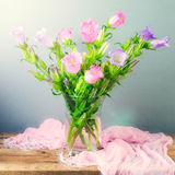 Flor de campana hermosa Imagen de archivo libre de regalías
