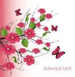 flor de cereja com borboleta ilustração do vetor