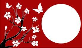Flor de cereja de Japão Fotografia de Stock