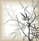 Flor de cereja do estilo de Ásia ilustração stock
