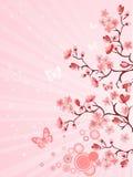 Flor de cereja japonesa ilustração do vetor