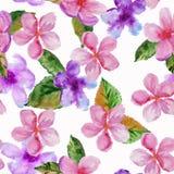 Flor de cerejeira do fundo Teste padrão sem emenda illustra da aquarela Imagens de Stock