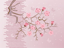Flor de cerejeira e borboletas Imagens de Stock
