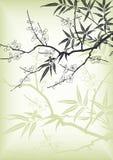 Flor de cereza del estilo de Asia Fotografía de archivo libre de regalías