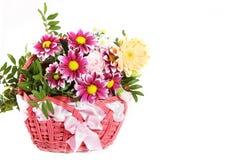 Flor de cesta Imagem de Stock Royalty Free