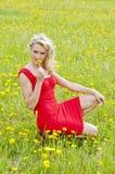 Flor de cheiro da jovem mulher em um prado Fotografia de Stock