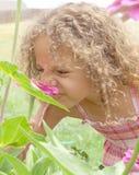 Flor de cheiro da rapariga Fotografia de Stock Royalty Free