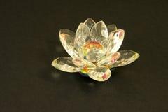 Flor de cristal. Imágenes de archivo libres de regalías