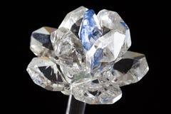 Flor de cristal Imagen de archivo libre de regalías