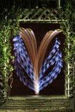 Flor de Digitaces hecha en naturaleza artificial Imagenes de archivo