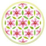 Flor de flores da vida ilustração stock