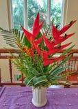 Flor de Heliconia en el florero fotografía de archivo libre de regalías
