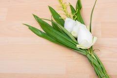 Flor de lótus brancos Fotos de Stock Royalty Free